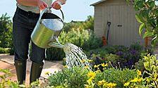 Garden care & watering