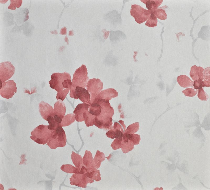 Blossom Cream and Red Wallcovering