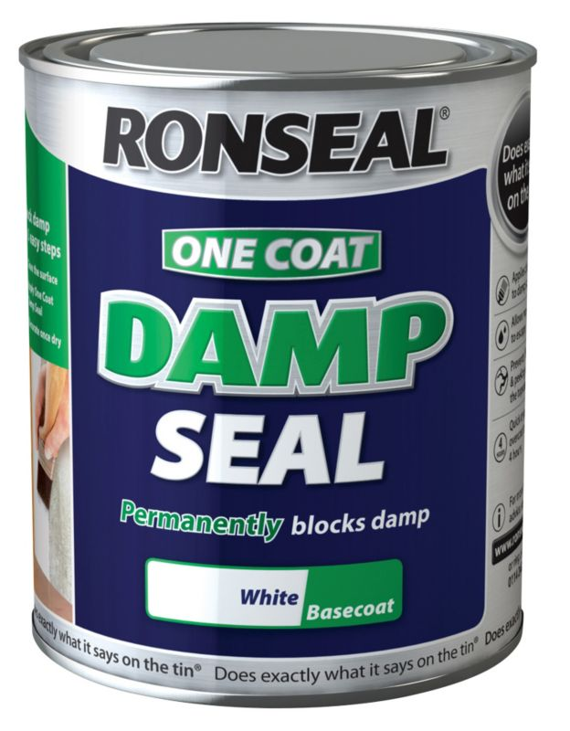 Ronseal One Coat Anti-Damp Paint White