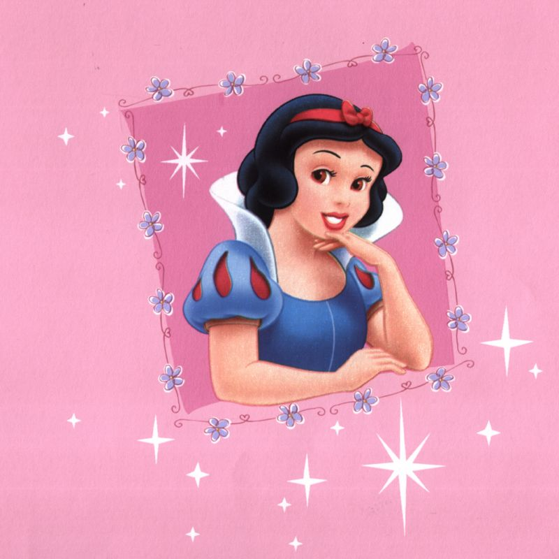 all princesses disney. Disney Princess Wallcovering