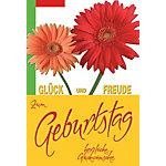 BSB Obpacher Geburtstagskarten + Umschläge Gerbera Weiß 10 Stück