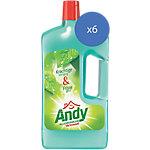 Andy Allesreiniger Vertrouwd 6 x 1 l 6 x 1 l