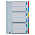 Esselte Tabbladen 100168 A4 Kleurenassortiment 6 tabs 11 gaats 130 g