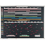 Legamaster Planner Professional Zwart 170 x 120 cm