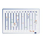 Planning Legamaster Accents Annuel 90 x 4 x 60 cm