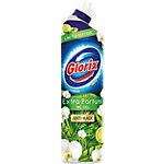 Gel pour les toilettes Glorix Lime 750 ml