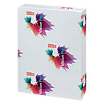 Office Depot Vision Pro Farblaserpapier A3 250 g