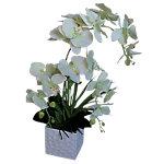 Künstliche Pflanze Orchidee Grün, Weiss