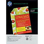 Papier photo jet d'encre HP Professional Blanc Brillant 180 g