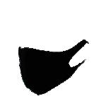 Masques en tissu Noir Catégorie 1 - 2 Unités