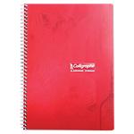 Cahier Calligraphe A4 petits carreaux 180 pages  70g à spirales   coloris assortis