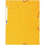 Chemise à élastique 3 rabats   Exacompta   A4   Carte lustrée 5