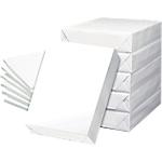 Carton de 5 ramettes de 500 feuilles de papier A4 80 g