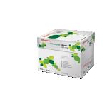 Papier 100% recyclé Office Depot A4