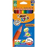 12 Crayons de couleurs Evolution Conté