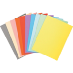 10 chemises Exacompta Forever assortiment de couleurs