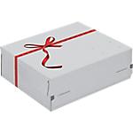 Boîte d'expédition Cadeau 24,1 (H) x 16,6 (l) x 9,4 (P) cm Blanc