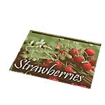 Tapis d'accueil odoriférants Paperflow Fruits rouges 100% polyamide, dessous en vinyle 80 (L) x 60 (l) cm Vert