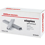 Agrafes Office Depot   1000