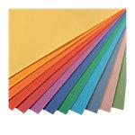 24 feuilles de papier à dessin mi teintes   Canson   50 x 65 cm   160 g