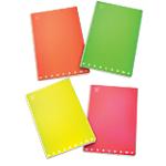 Quaderni Pigna Maxi assortiti a quadretti microperforazione A4 21 x 29,7 cm 80 g